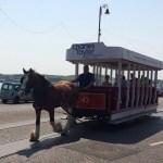 horse trams
