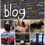 Blog 15 Sep 19